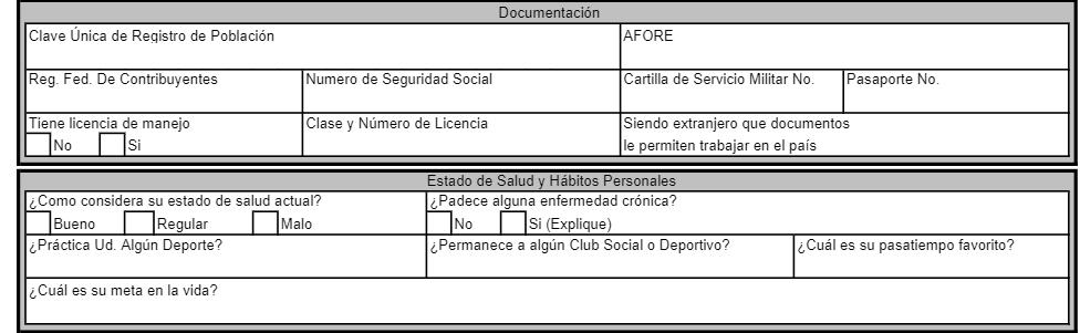 solicitud de empleo pdf